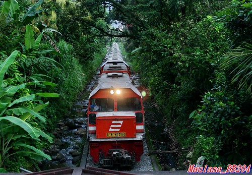 "Cement Train in the Jungle • <a style=""font-size:0.8em;"" href=""http://www.flickr.com/photos/35089975@N06/9076733106/"" target=""_blank"">View on Flickr</a>"