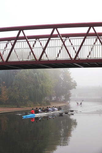 Early morning rowers in the fog