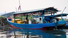 DSC03399 (Large)