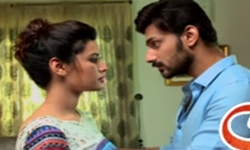 Naimat Episode 22 Promo Full by Ary Digital Aired on 28th November 2016