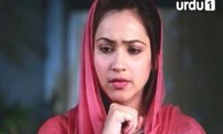 Ek Pal Ka Malal Episode 3 Full by Urdu1 Aired on 23rd November 2016