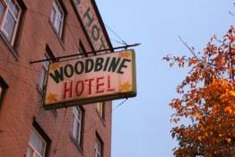 DTES Woodbine