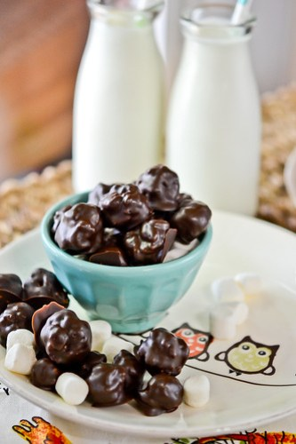 Chocolate Marshmallow Crunch Candy-14