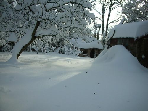 Log House 2010