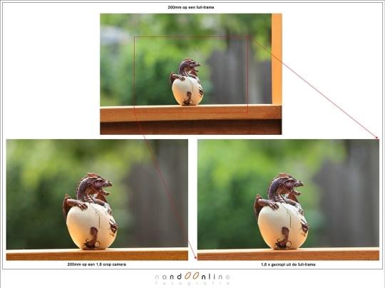 Het 'verschil' tussen 200mm op een 1,6 crop camera en een 1,6x crop uit een full frame beeld