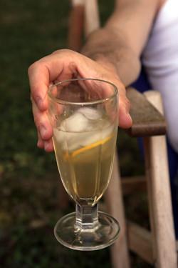 lemon ginger soda