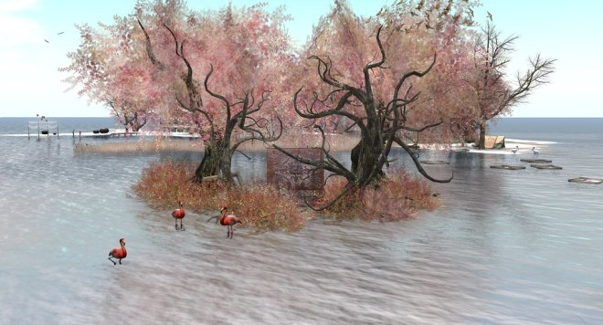 Neva River Region