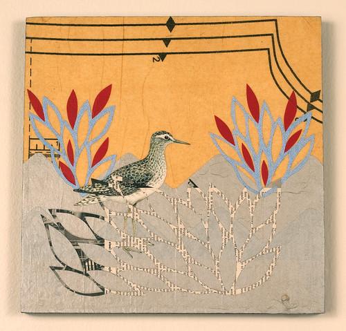 Bird Collage - Sandpiper