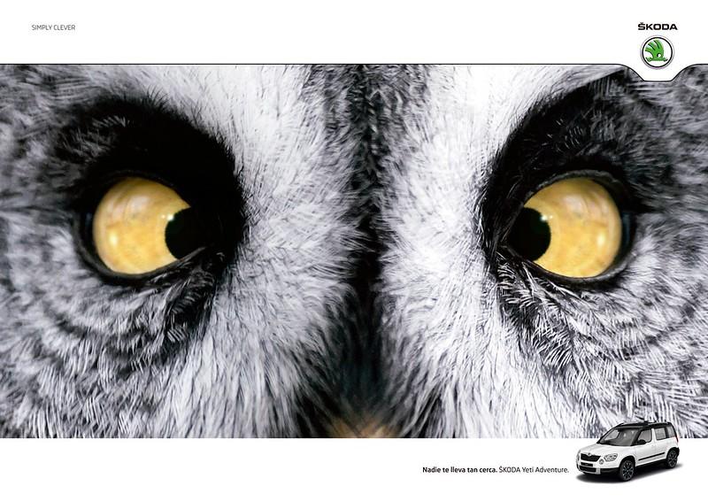 Skoda - Owlle