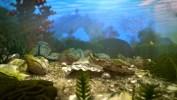 Gauthier_Underwater_Colored_withMB_WireframePassStill__00256