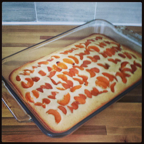Apricot kuchen... is what's for breakfast!