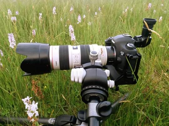 Een 70-200mm met 25mm tussenring: de favoriete combinatie voor bloemen te fotograferen