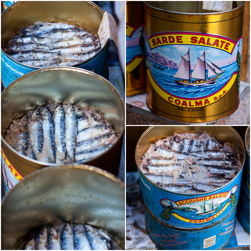 anchovies and sardines