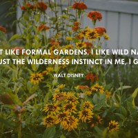 Good Words Wednesday: I Don't Like Formal Gardens.