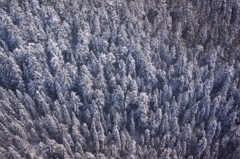 A long way down | Whistler