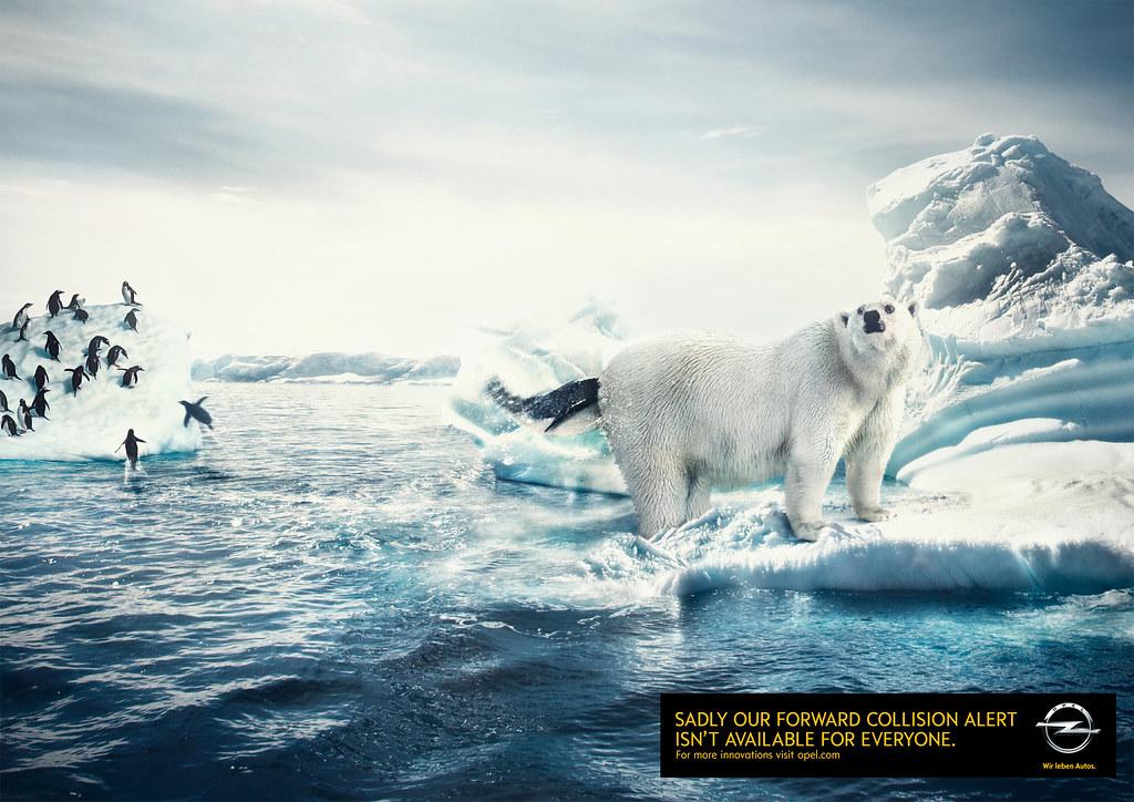 Opel - In the Ass of Polar Bear