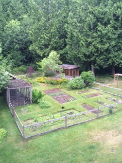 Getting the garden into better shape