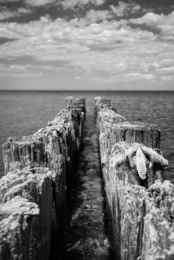 Whitefish Point: Water V