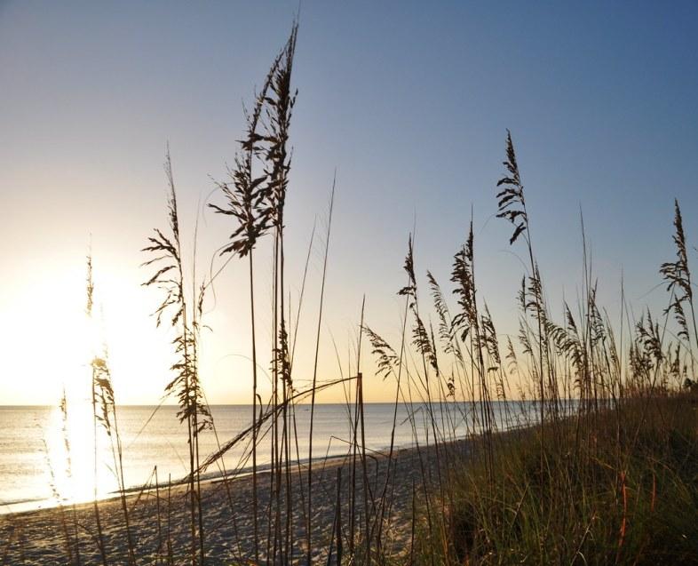 Stump Pass Beach State Park, Manasota Key, Englewood, Fla., Aug. 26, 2014