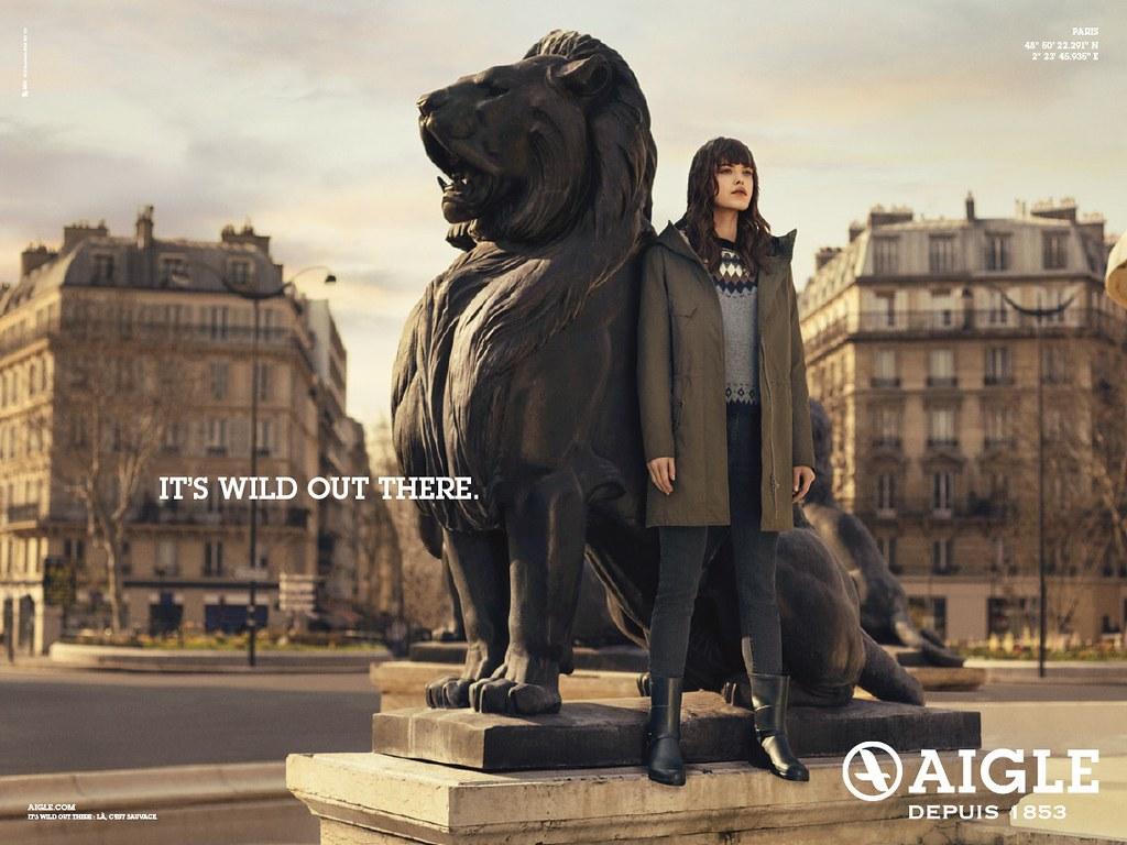 Aigle - Lion