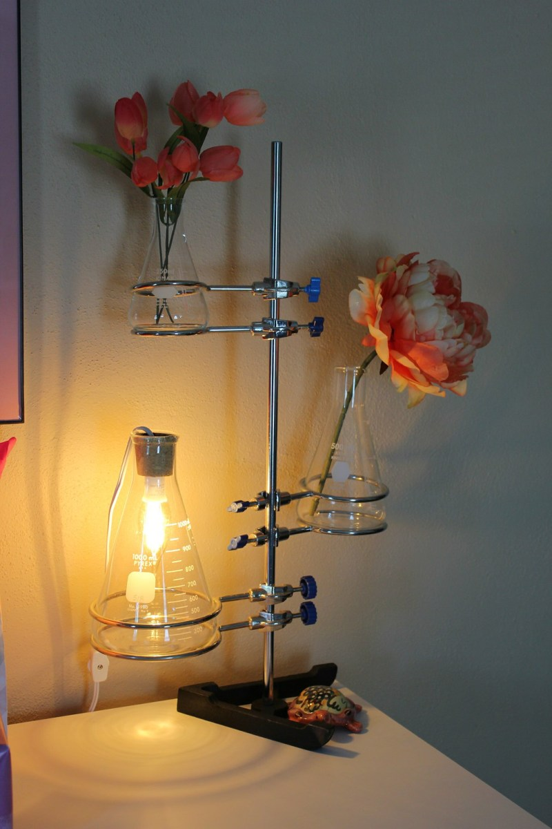 Decorating Ideas > Geeky, Science Themed Nursery For The Child Of A Librarian ~ 030353_Nerdy Dorm Room Ideas