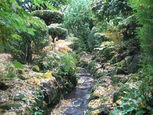 Japanese gardens in Co. Kildare