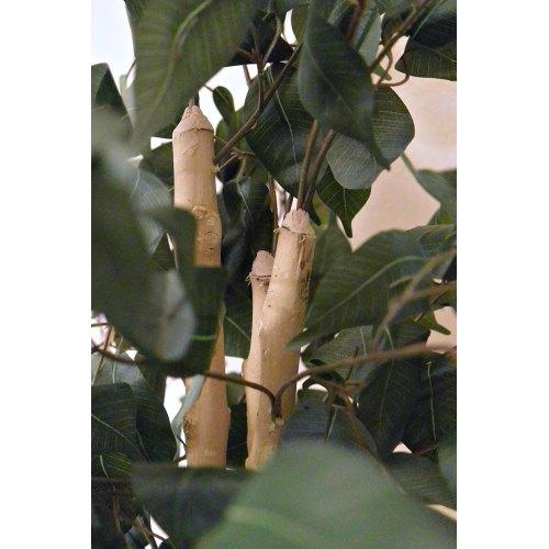Medium Crop Of Silk Plants Direct