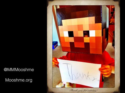 MinecrafttheSwedishToy.029