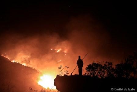 Combate a incêndio Florestal