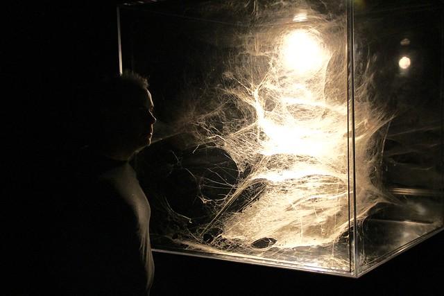 DXO at an art installation at the Cultural Center