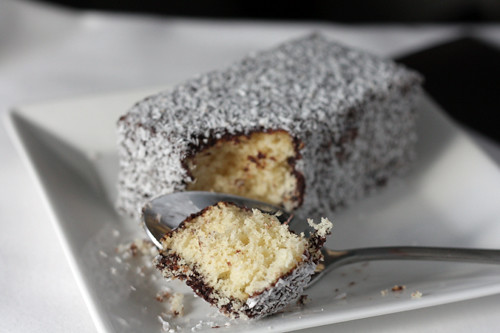 airplane lamington