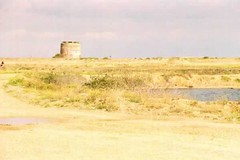 """Martello Tower • <a style=""""font-size:0.8em;"""" href=""""http://www.flickr.com/photos/59278968@N07/6326164988/"""" target=""""_blank"""">View on Flickr</a>"""