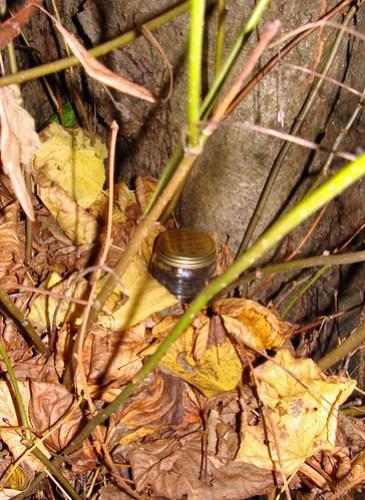 Jar No 317 in situ 01