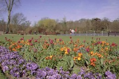 "Hampden Park Flowers • <a style=""font-size:0.8em;"" href=""http://www.flickr.com/photos/59278968@N07/6325940496/"" target=""_blank"">View on Flickr</a>"