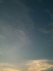 A Little Kite in The Blue Sky