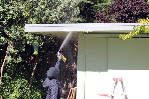 Spraying the wasps