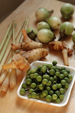 Thai ingredients for green curry