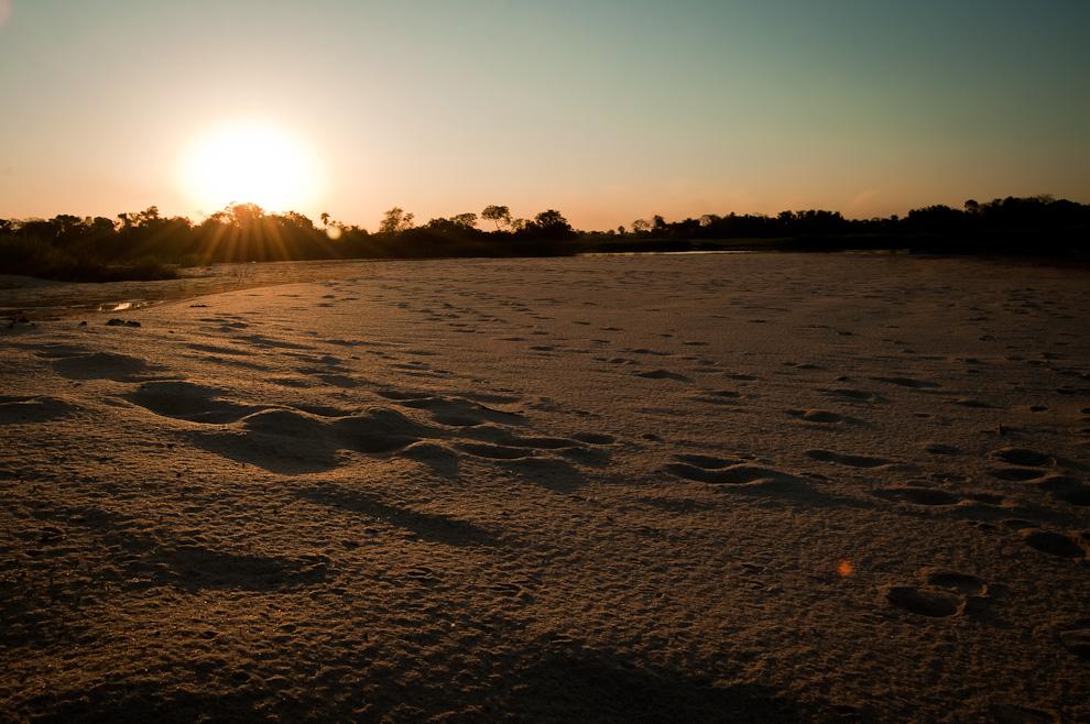 Un cálido atardecer tuvimos el viernes 8 de Julio en una lejana playa a orillas del Río Jejuí en el Departamento de San Pedro, algunas de las huellas que encontramos en esta playa (casi virgen por su imposible acceso con vehículo) correspondían a animales salvajes como zorros (aguará), caballos, venados y algunas serpientes. (Elton Núñez)