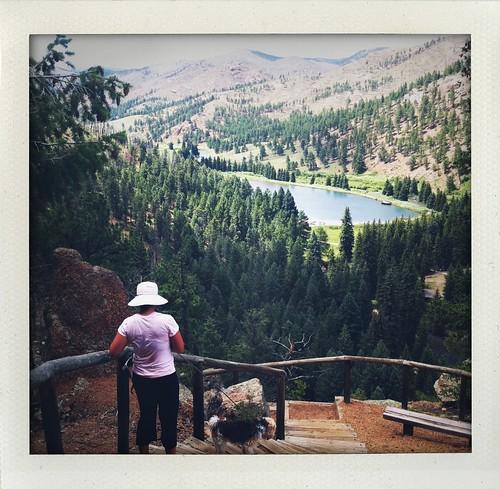 hiking Pine