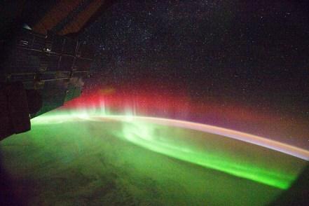 Nature's Magic Greens and Red Aurora