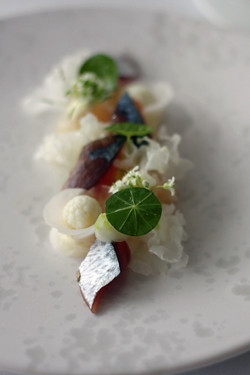 blue makerel sashimi