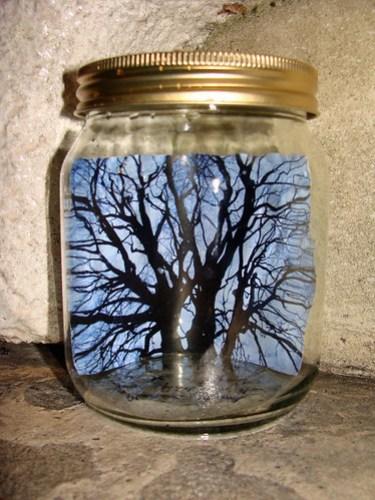 Jar No 263