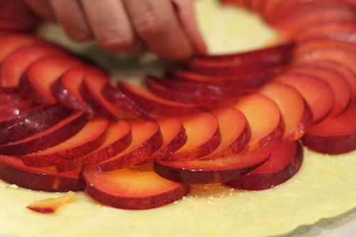 plum tart
