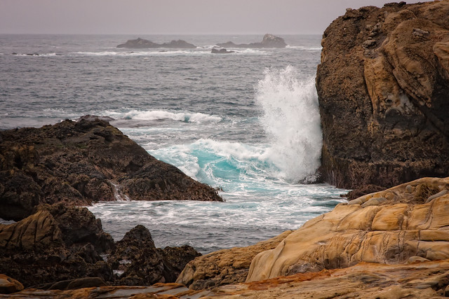 Surf - Point Lobos - 2008