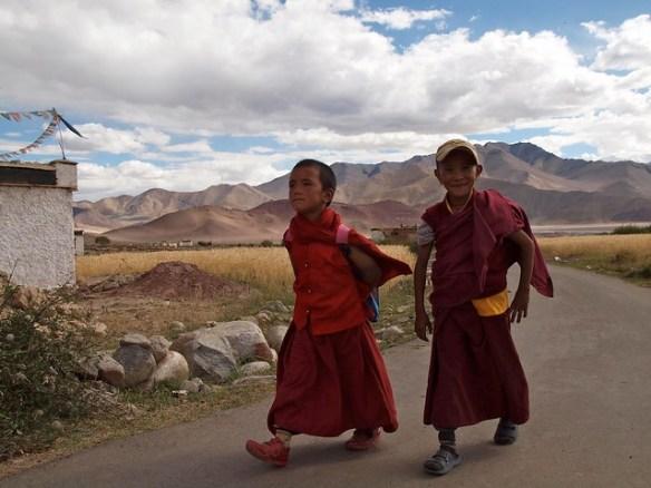 Monaci a Nyoma, Ladakh
