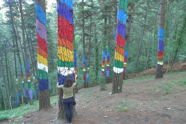 El Bosque del Arco-Iris - País Vasco