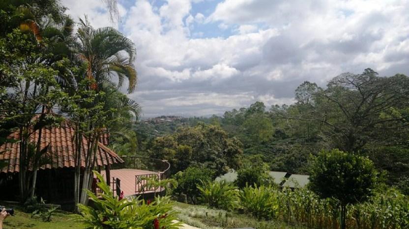 Espiritu Santo Coffee Plantation, Naranjo, Costa Rica