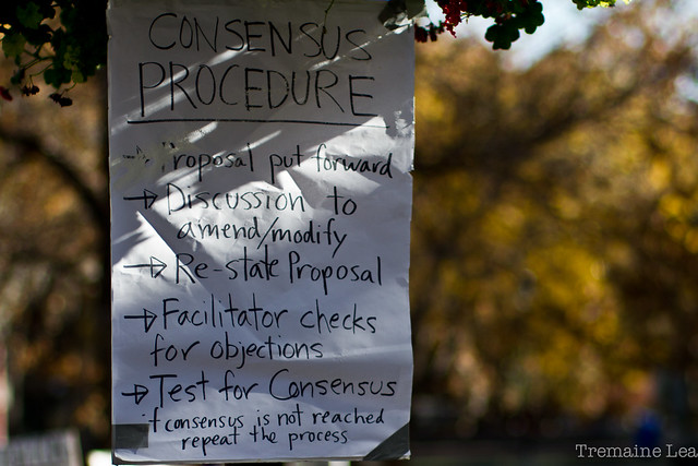 Occupy Calgary sign - consensus procedure IMG_2451