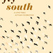 FlySouthPoster_S
