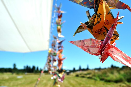 Some of the 1,000 Origami Cranes for a Friend's Washington Wedding, Aug. 2011